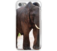 'Gimme Shelter' iPhone Case/Skin