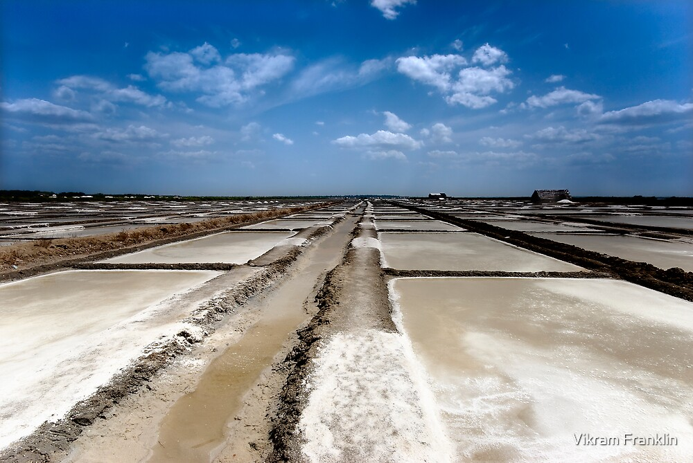 Salt pans of Marakkanam by Vikram Franklin