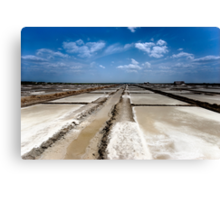 Salt pans of Marakkanam Canvas Print