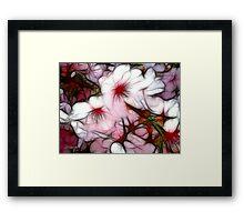 Pink Rhapsody Framed Print