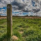 The Path to Norland Moor by Glen Allen
