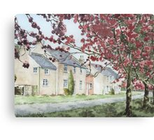 Cherry Trees Canvas Print