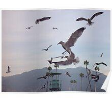 The Birds At Santa Anita Poster