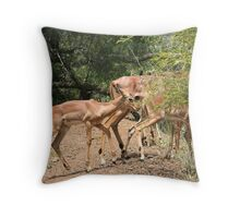 Following the family Throw Pillow