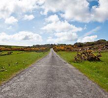 Islay road by Jaime Pharr