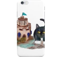 Kitten Encounters a Crab iPhone Case/Skin