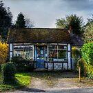 General Store by Nigel Bangert