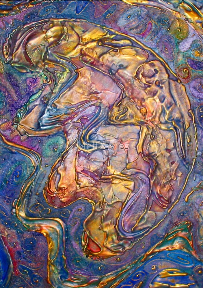 Untitled (Close up of Ocean Floor) by MelDavies