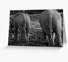 Does My Bum Look Big In This! Greeting Card