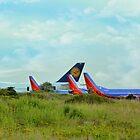 Big Planes On The Prairie  by WildestArt