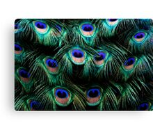 Glowing Eyes Canvas Print