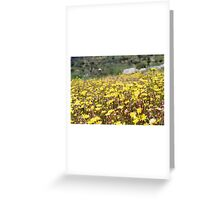 Let's watch the flowers grow Greeting Card