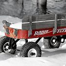 Radio Flyer by Jeanne Sheridan