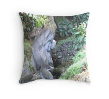 Character of the rock Throw Pillow