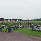 Picnic at the Vineyard by Margie Avellino