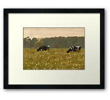 Happy Cows II Framed Print