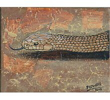 The Eastern Brown Snake Photographic Print
