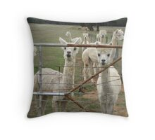 Please let us out. Throw Pillow