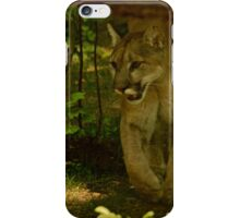 Walking Through the Forest iPhone Case/Skin