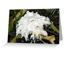 melting fungus- the end Greeting Card