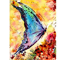 ScatterFly 2 Photographic Print