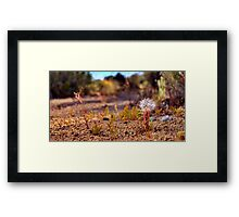 Wild flowers - The Loner Framed Print