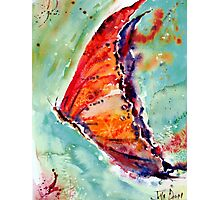 ScatterFly 1 Photographic Print