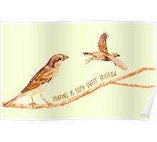 Sparrow Partings Poster