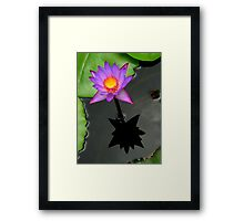 The Water Garden ~ Part Three Framed Print