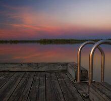 Morning Dock by Heather  Waller-Rivet  IPA