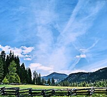 Busy Sky by NancyC