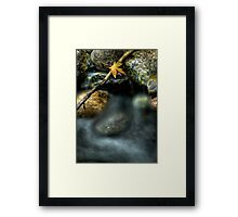 Septembers Meander Framed Print