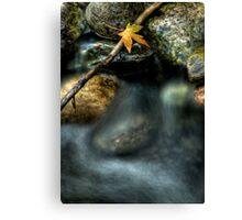 Septembers Meander Canvas Print