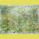 """""""A Window of Dreams"""" Scarf ~  Yellow Textured Borders by Susan Werby"""