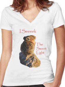 I Seeeek...The Sweet Light Women's Fitted V-Neck T-Shirt