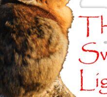 I Seeeek...The Sweet Light Sticker