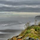 The Mists of Greymouth ( 1 ) by Larry Lingard-Davis