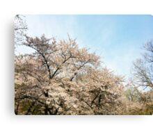 8 Bit Pixel Sakura Canvas Print