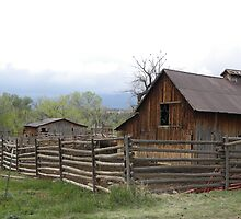 Barn in Wet River Valley by Jimlhanson