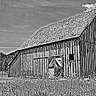 Black and White Barn by NancyC
