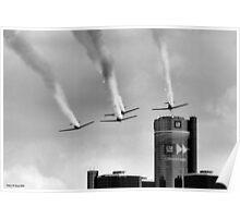 RedBull Air Race  2008 Poster