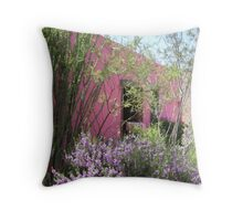 Warm and Cool Colors Throw Pillow