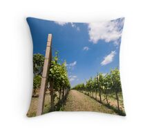 Words and meanings Throw Pillow