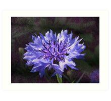 Tactile Fleur de Bleu Art Print
