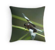 071609-158 Throw Pillow