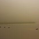 Foggy Swim by chazz