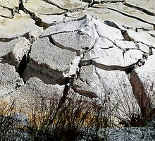 dry yellowstone mud by tego53