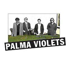 Palma Violets by Mitch Grant