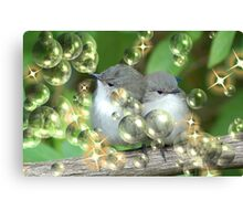 Fluffy Card for Christmas? Canvas Print