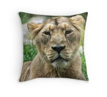 Kalinga! Throw Pillow